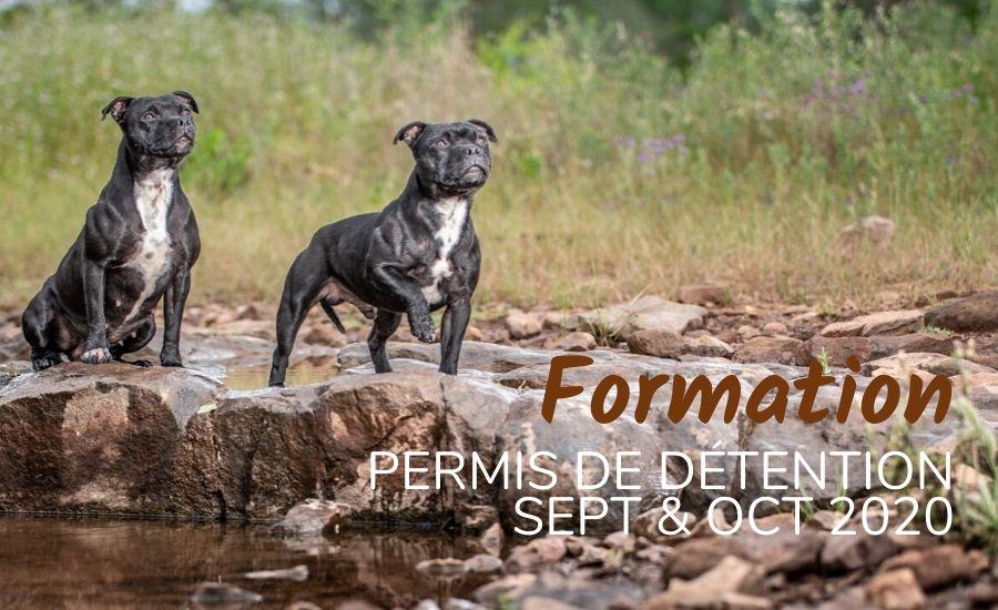 Formation Permis Détention #Sept&Oct20
